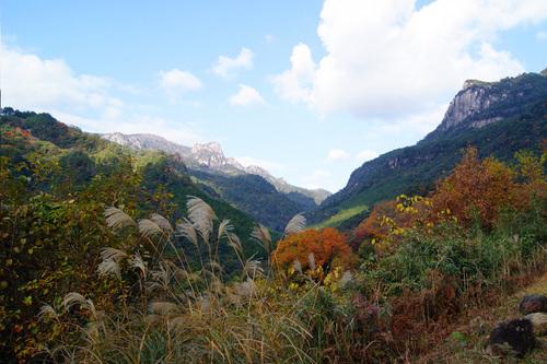 秋の大崩山の風景