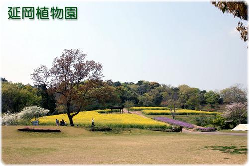 植物園全景