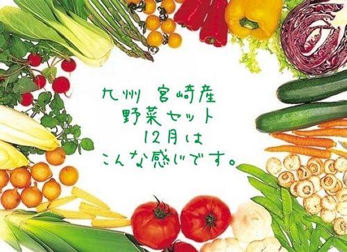 九州 宮崎産 12月の野菜はこんな感じです。.jpg