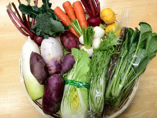 九州宮崎産野菜セット.jpg