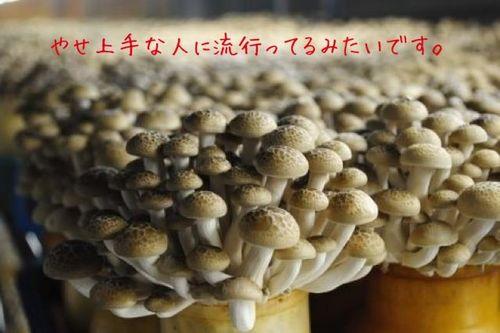 写真 11-10-31 20 29 07.jpg