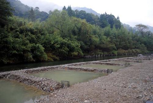 釣り堀になった河原.jpg
