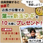 banner-shintamanegi.jpg