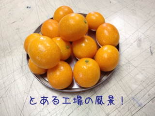 image-20120330095339.png