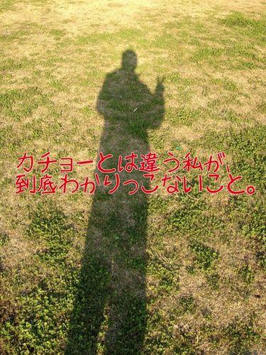 写真 11-12-22 15 57 50.jpg