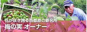 banner-top-umenomi.jpg